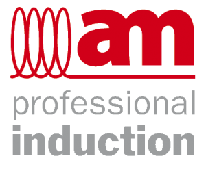 am-professional-induction